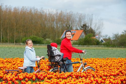 تعطیلات در هلند