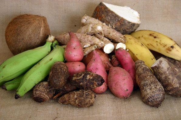 صادرات دومینیکا